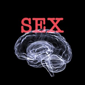 The Body Part to Properly Stimulate for Fantastic Sex