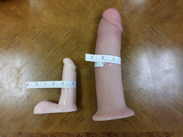 Penis Models Normal Girth